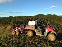 Noxious Weed & Gorse Control